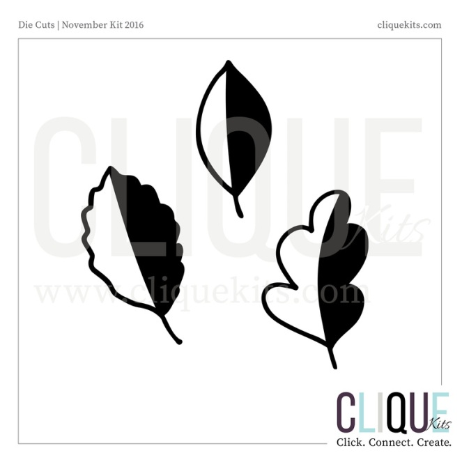 ck-nov16-cuts-web4_2_orig